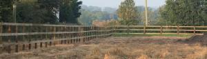agricultural fencing 300x86 - agricultural-fencing