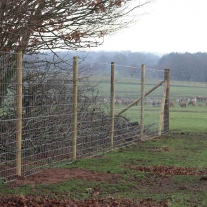 wildlife fencing 300x300 - wildlife-fencing